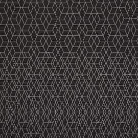 Sina Pearson - Gradient Night - 492-92