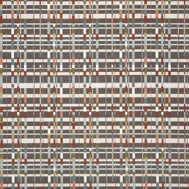 CF Stinson - Rhythm Biome - 65829