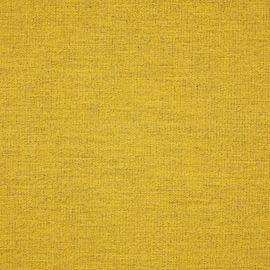 KB Contract - Aspire Sunflower - SUNC102-04