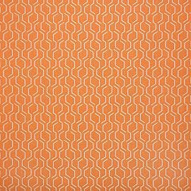 United Fabrics - Adaptation Apricot - 69010-0003